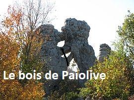 Pailovie1 1